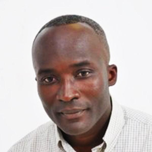 Profile Dr Reginald Hammah1 min
